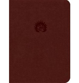 ESV The Reformation Study Bible Brick Red Leather-Like