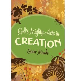Meade God's Mighty Acts in Creation