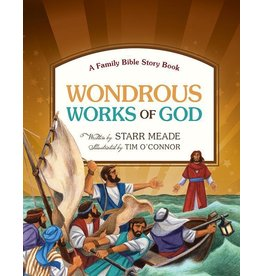 Meade Wondrous Works of God: A Family Bible Story Book