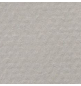 """CANSON MI-TEINTES 19""""x25"""" FLANNEL GREY"""