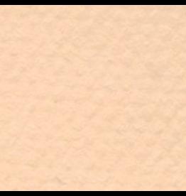 "CANSON MI-TEINTES 19""x25"" HONEYSKLE"
