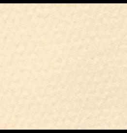 "CANSON MI-TEINTES 19""x25"" CREAM"