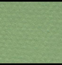 "CANSON MI-TEINTES 19""x25"" GREEN"
