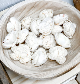 Dried Shell Flowers | Bag of 16
