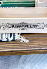 Bulb & Planter Garden Box
