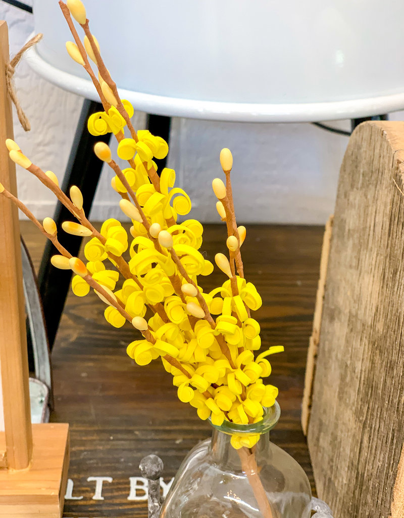 Yellow Curly Q