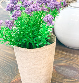 Blooming Plant in Paper Pot | Lavender