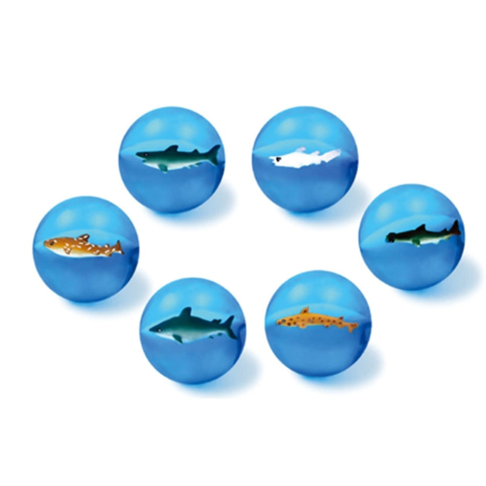 Ocean Wise Sea Life Bouncing Ball