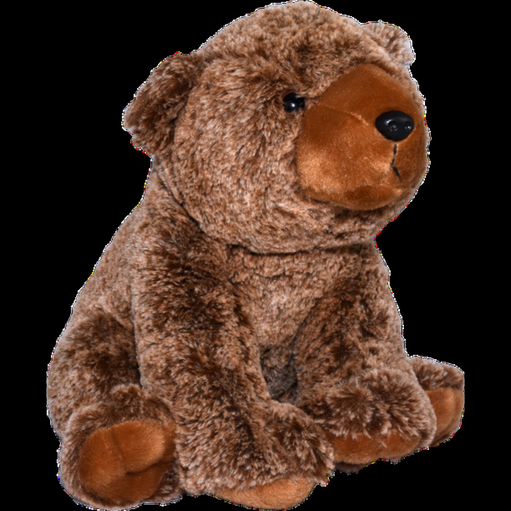 Ocean Wise Brown  Bear