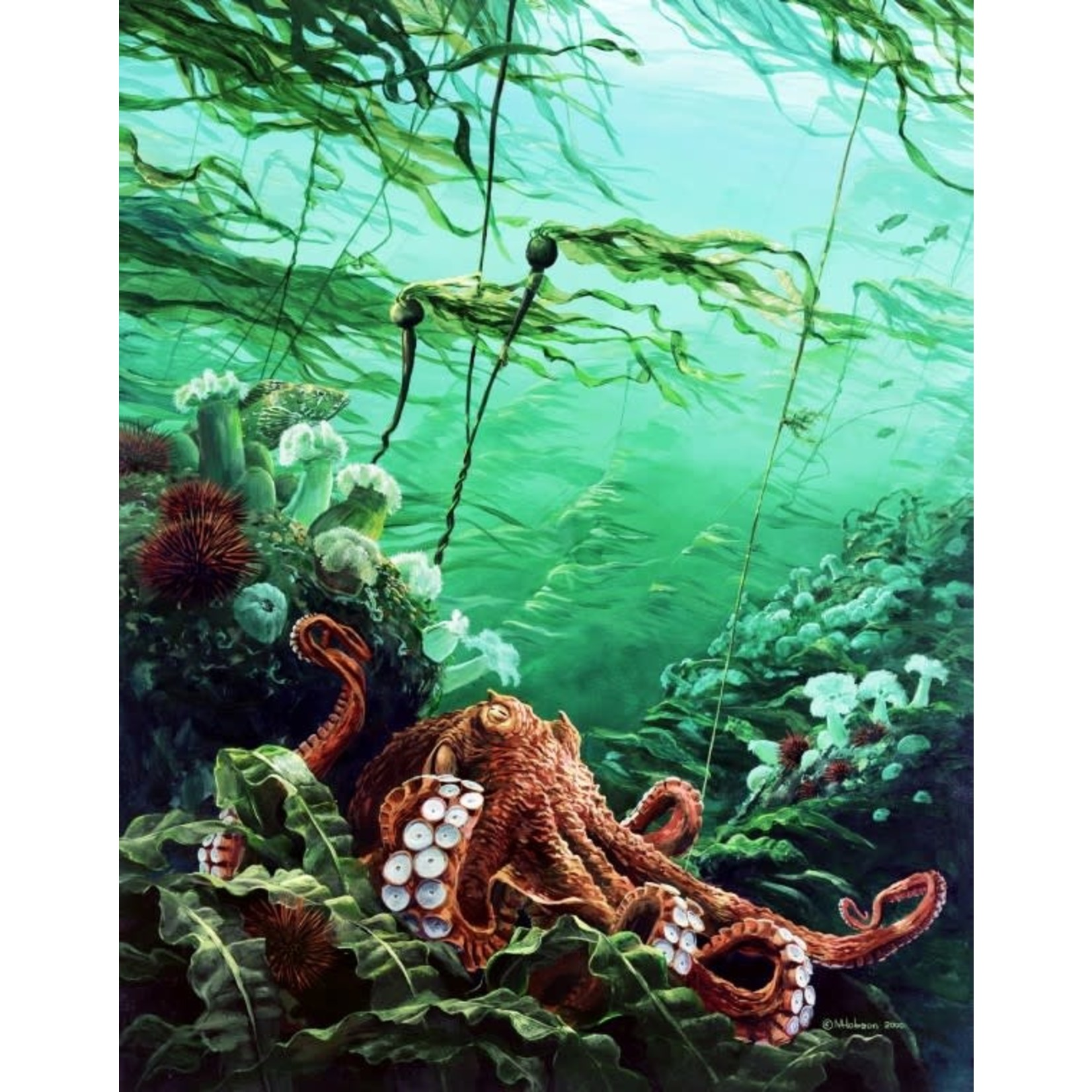 Mark Hobson Art Card  Octopus: Going With The Flow