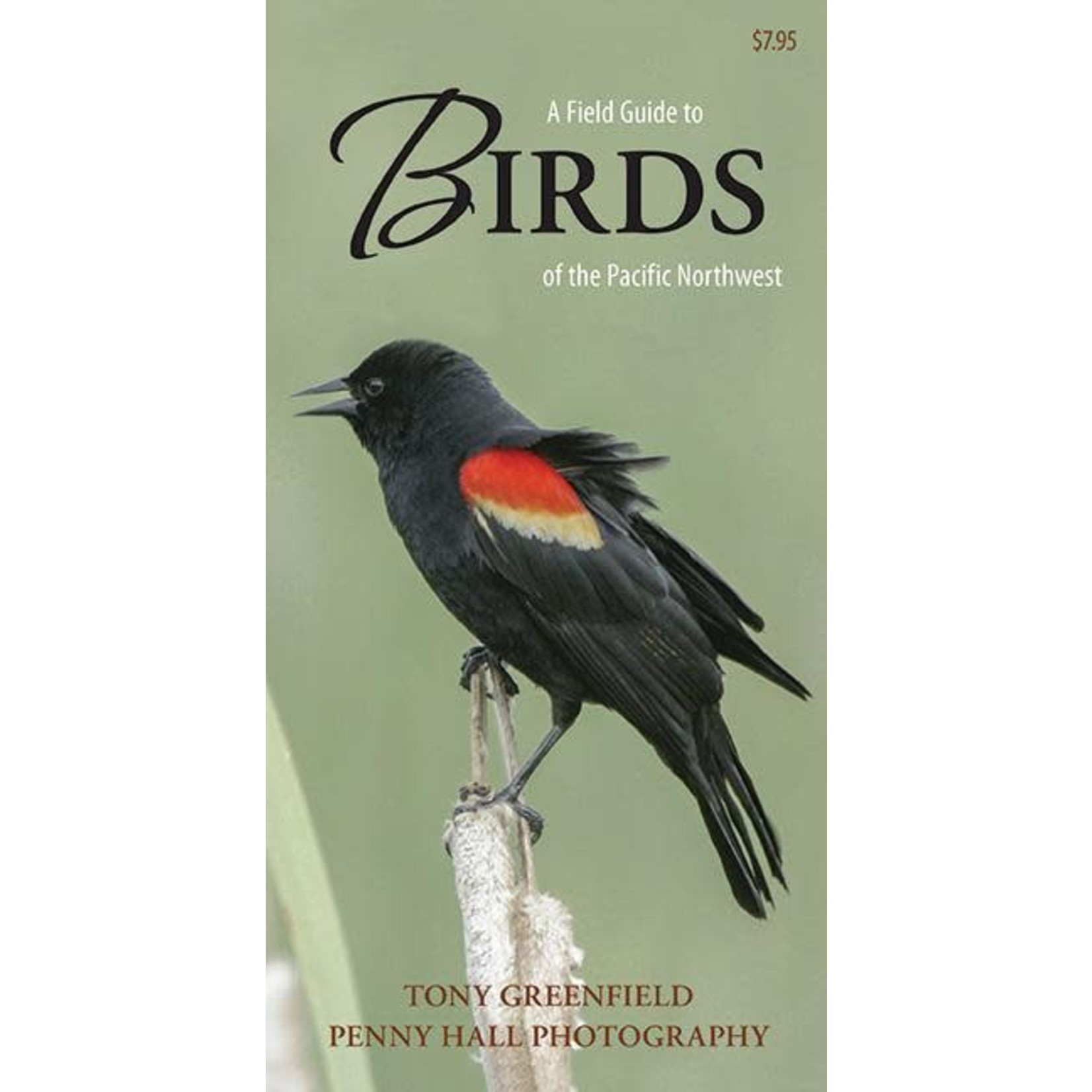 Harbour Publishing Field Guide Birds of the PNW