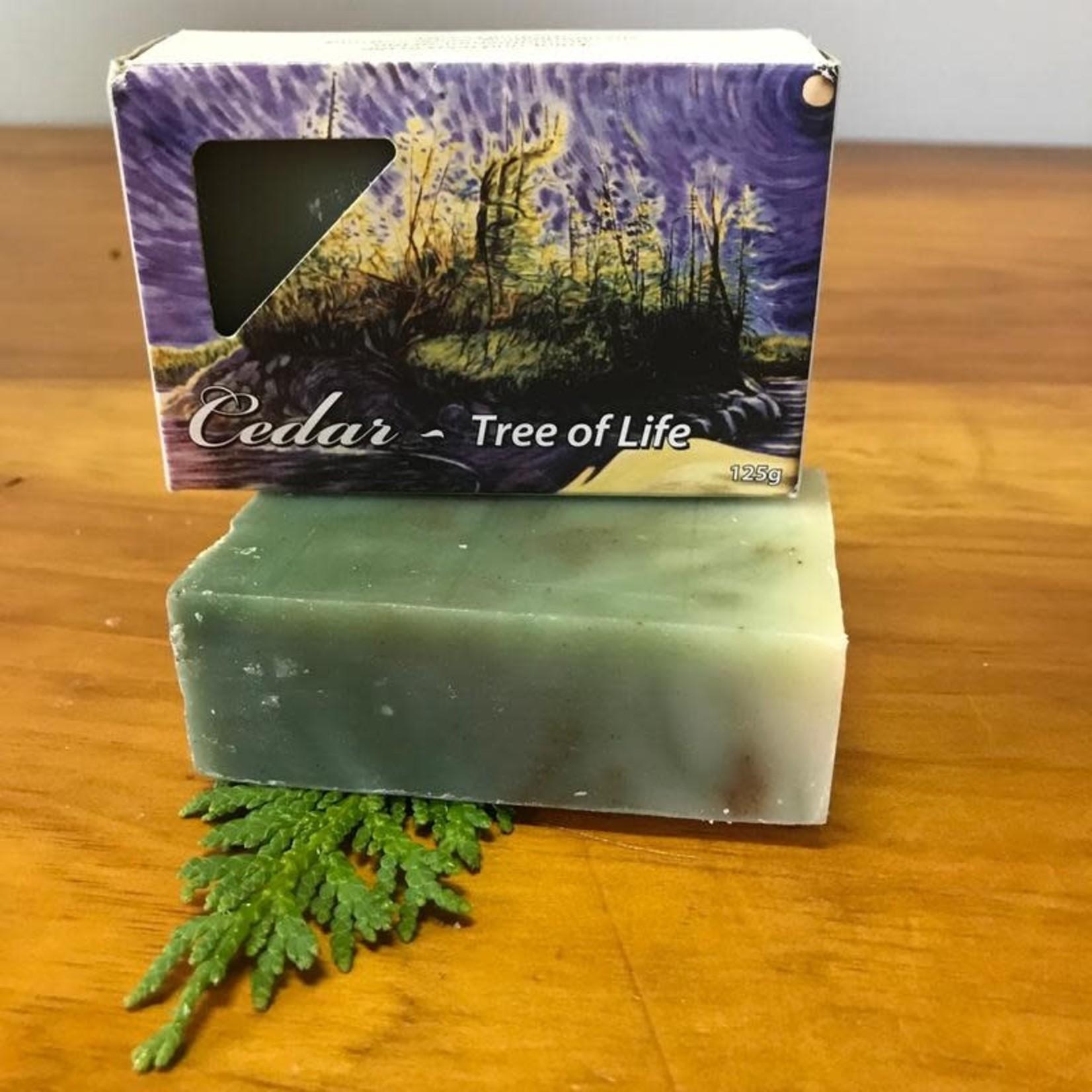 Sea Wench Cedar- Tree of Life Soap
