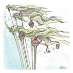Claire Watson Card Jingle Kelp