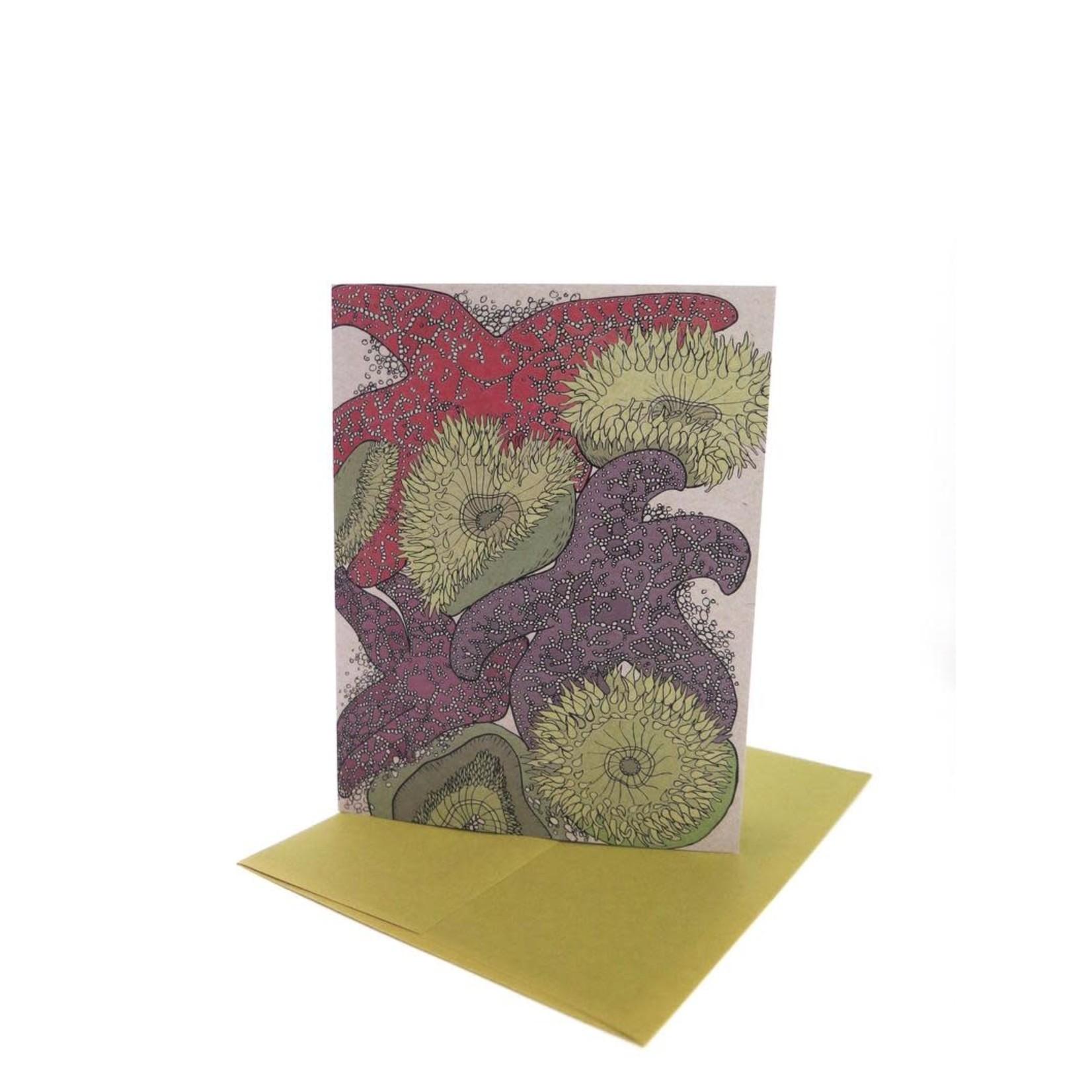 Wild Life Starfish Card