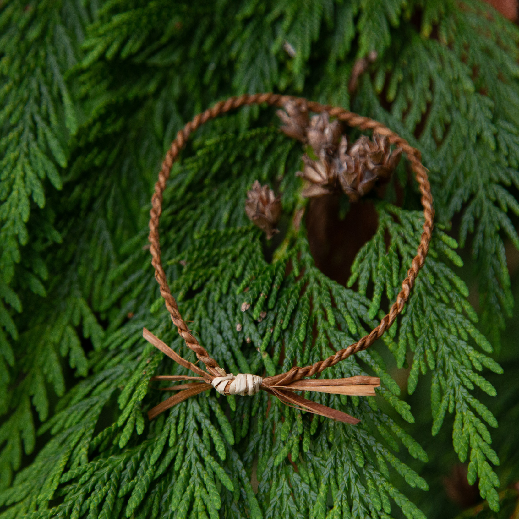 Elizabeth George bracelet cedar