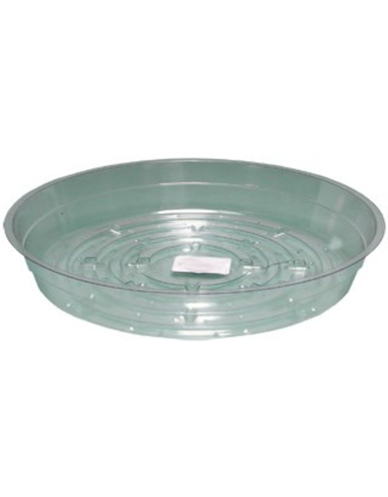 Clear 6 inch Saucer