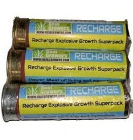 Recharge Shotgun Shell