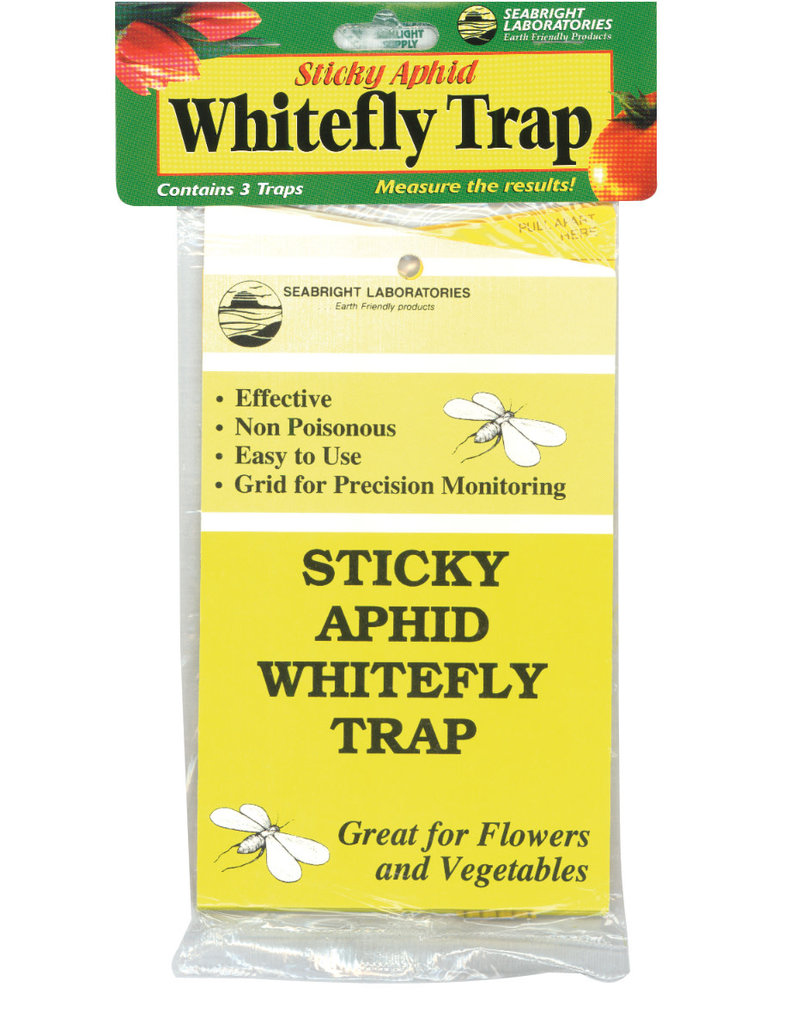 Sticky Aphid Whitefly Trap 5/Pack