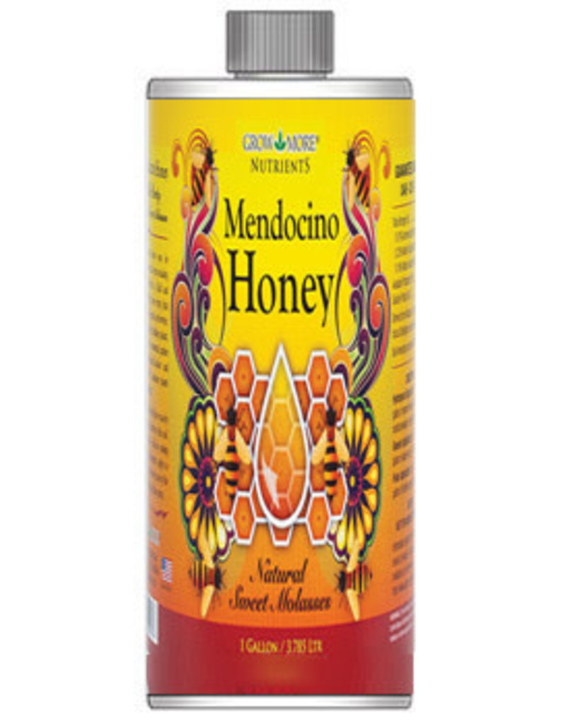 Mendocino Honey Qt