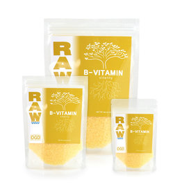 Raw RAW B-Vitamin 8 oz (6/cs)