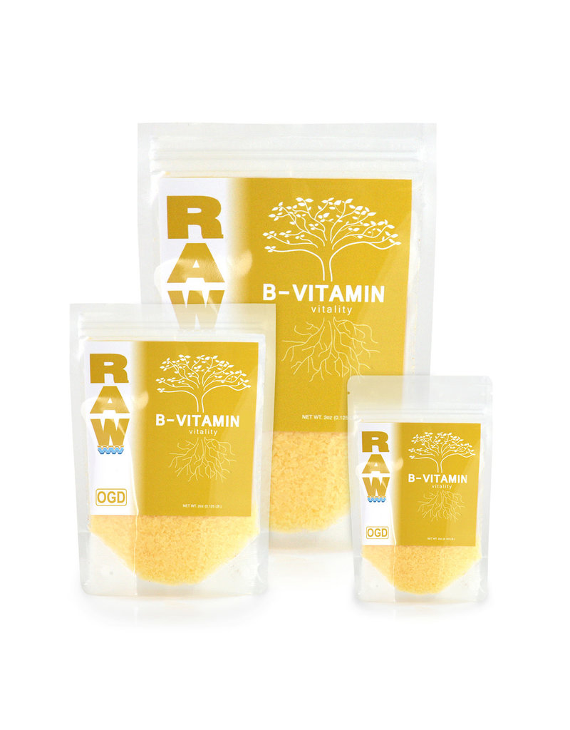 Raw RAW B-Vitamin 8 oz (6/cs)
