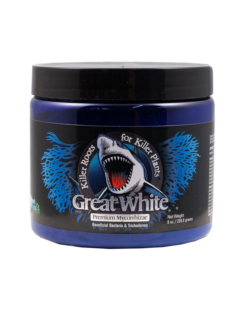Great White 8 oz.