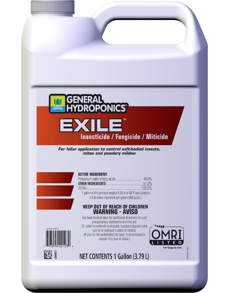 Exile, Gallon Control