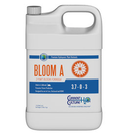 Current Culture Cultured Solutions Bloom A Quart (12/Cs)