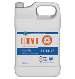 Current Culture Cultured Solutions Bloom B Quart (12/Cs)