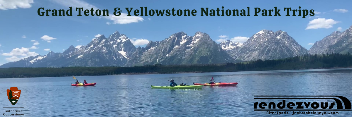 National parks trips banner