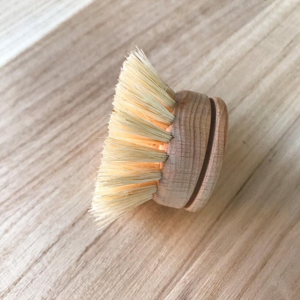 Teakwood & Agave Dish Brush Replacement Head