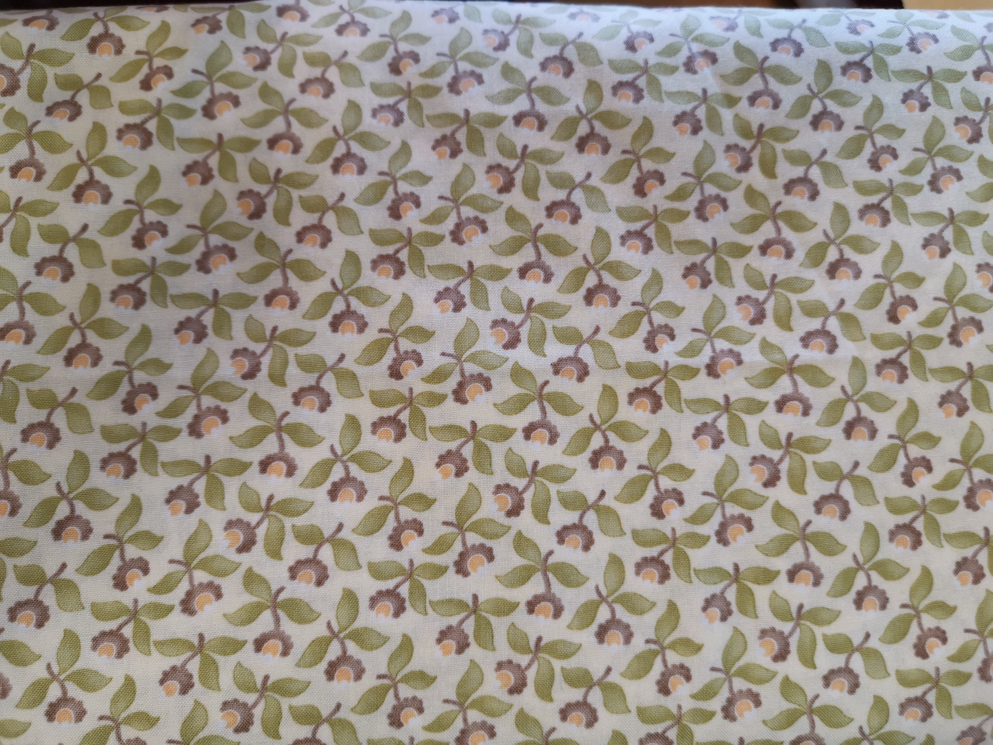 MODA Flowers PER CM OR $15/M TAPESTRY BY MODA NOW 12
