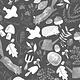 DEAR STELLA Autumn Journal, Peat /cm or $20/m