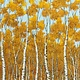 ROBERT KAUFMAN WILDWOOD GRACE, AUTUMN BIRCHES (19322-191) $0.20/CM OR $20/M