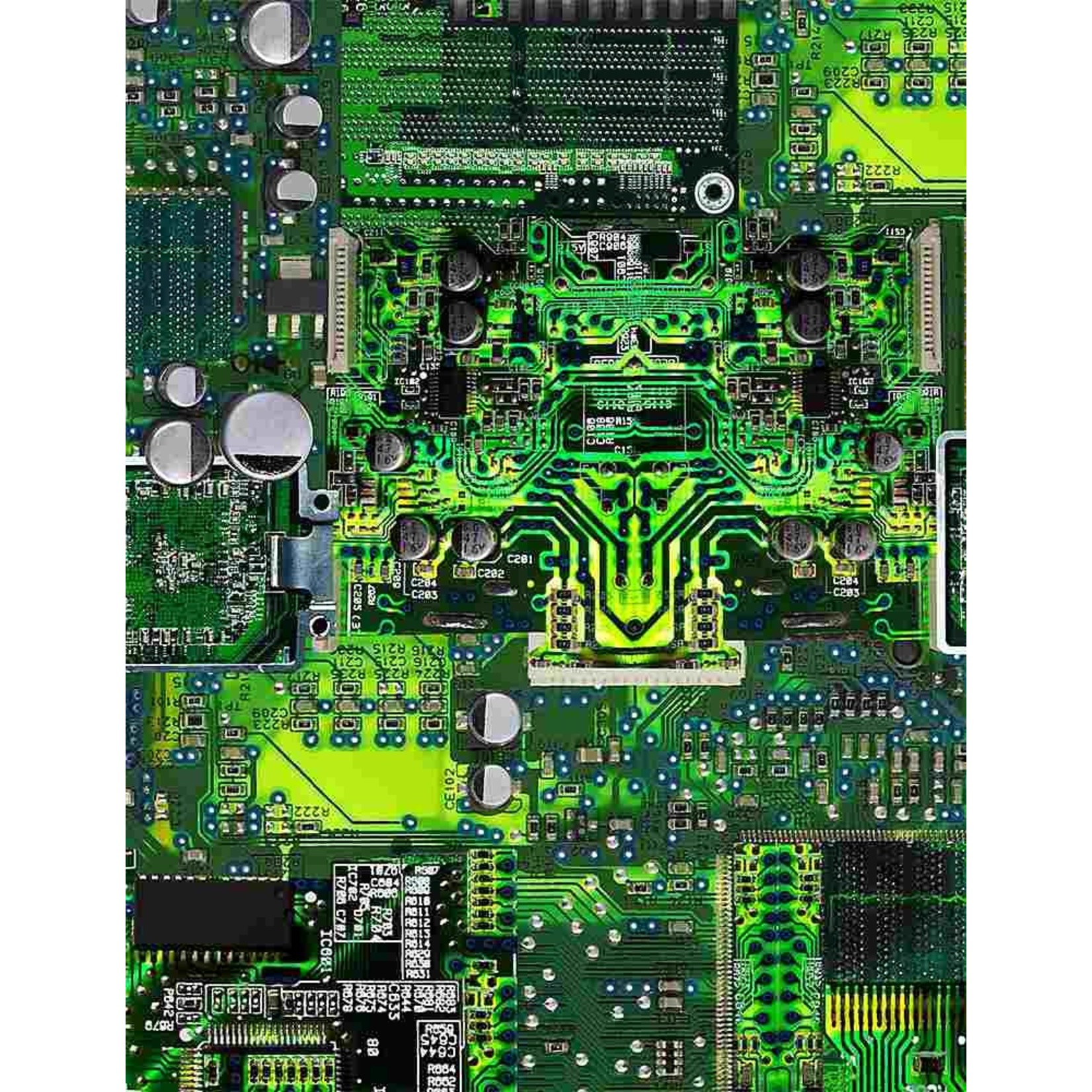 Timeless Treasures MATH AND SCIENCE, CIRCUIT BOARD GAIL-C8326  GREEN - PER CM OR $20/M