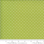 BONNIE & CAMILLE Shine On by Bonnie & Camille, OVER RAINBOW, GREEN 55218-16 PER CM OR