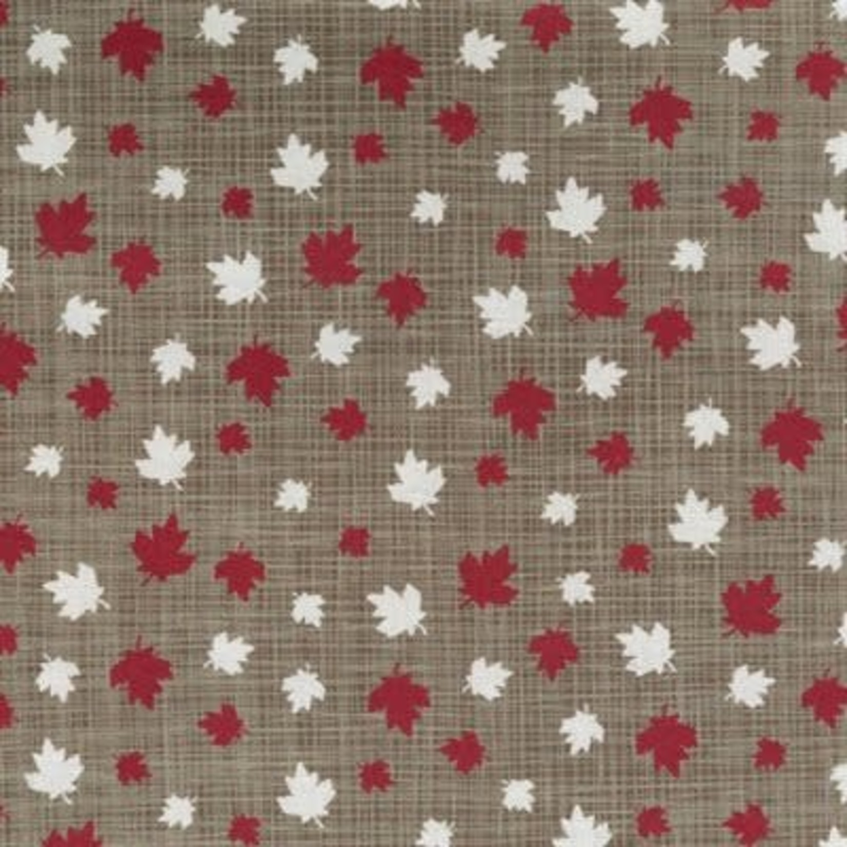 Kate & Birdie Paper Co. True North 2, Leaves, Tan 513212-16 per cm or $20/m