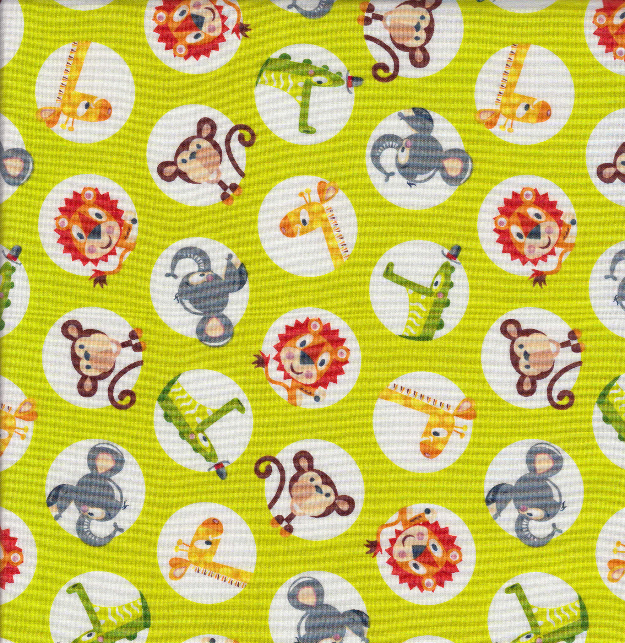 STUDIO E PRE CUT FOR BACKING 500CM ABC SAFARI, LIME CIRCLES