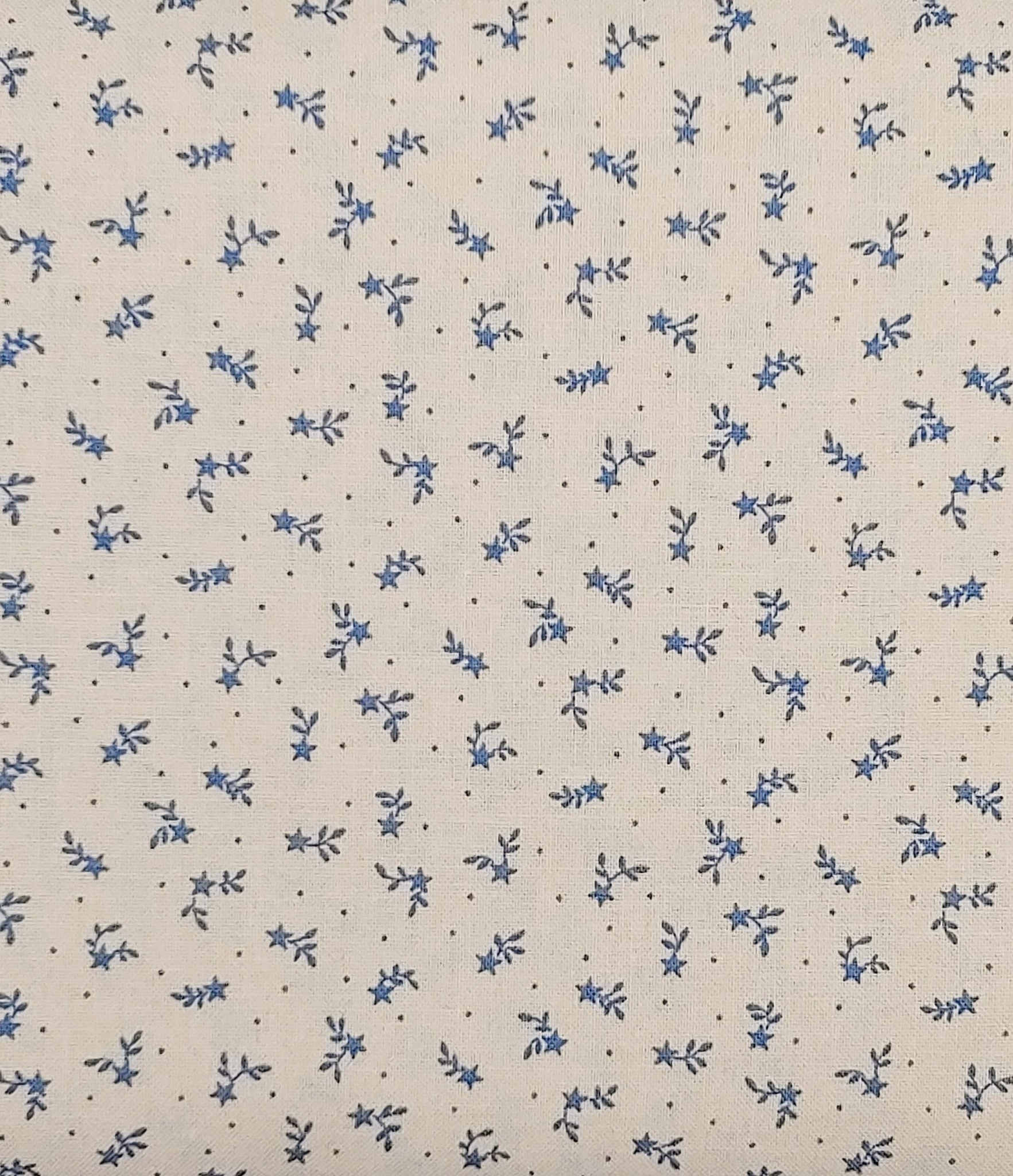 LECIEN PER CM OR $13/M LECIEN Tiny Stars and Branches white with blue