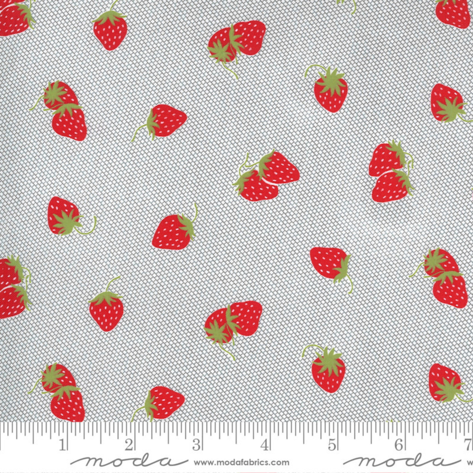 Bonnie & Camille Sunday Stroll, Berry Patch, Grey 55223 17 $0.20 per cm or $20/m