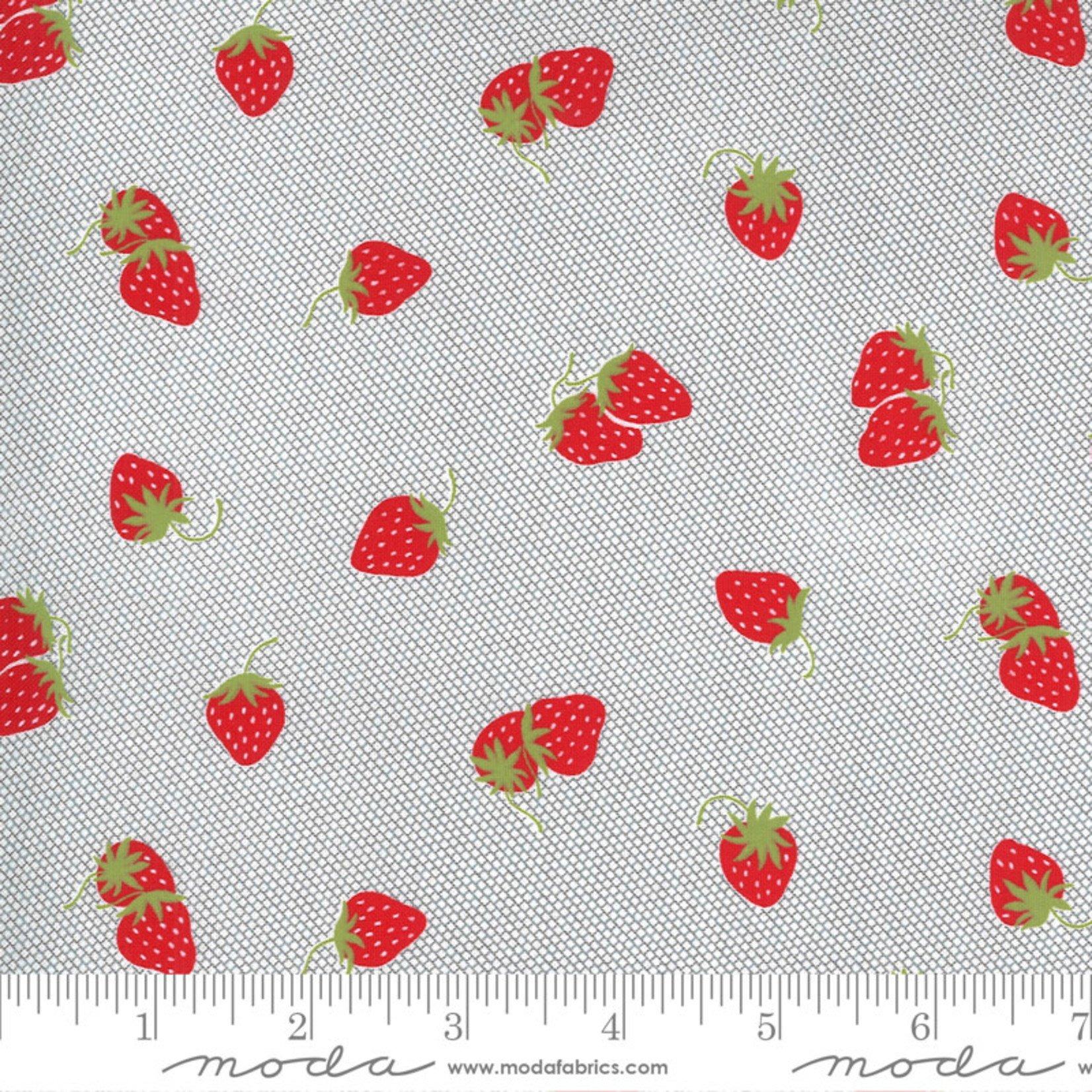 Bonnie & Camille Sunday Stroll, Berry Patch, Grey 55223 17 $0.20 per cm or $20/m