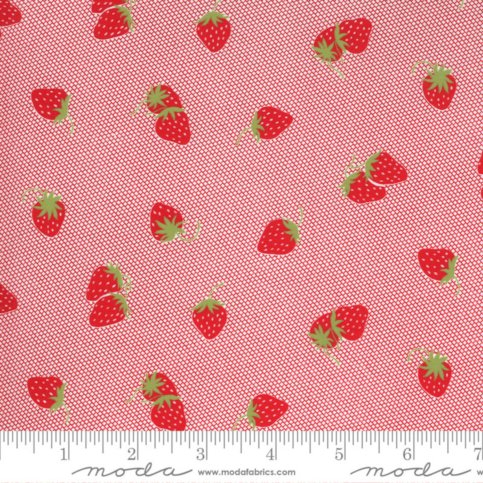 Bonnie & Camille Sunday Stroll, Berry Patch, Red 55223 12 $0.20 per cm or $20/m