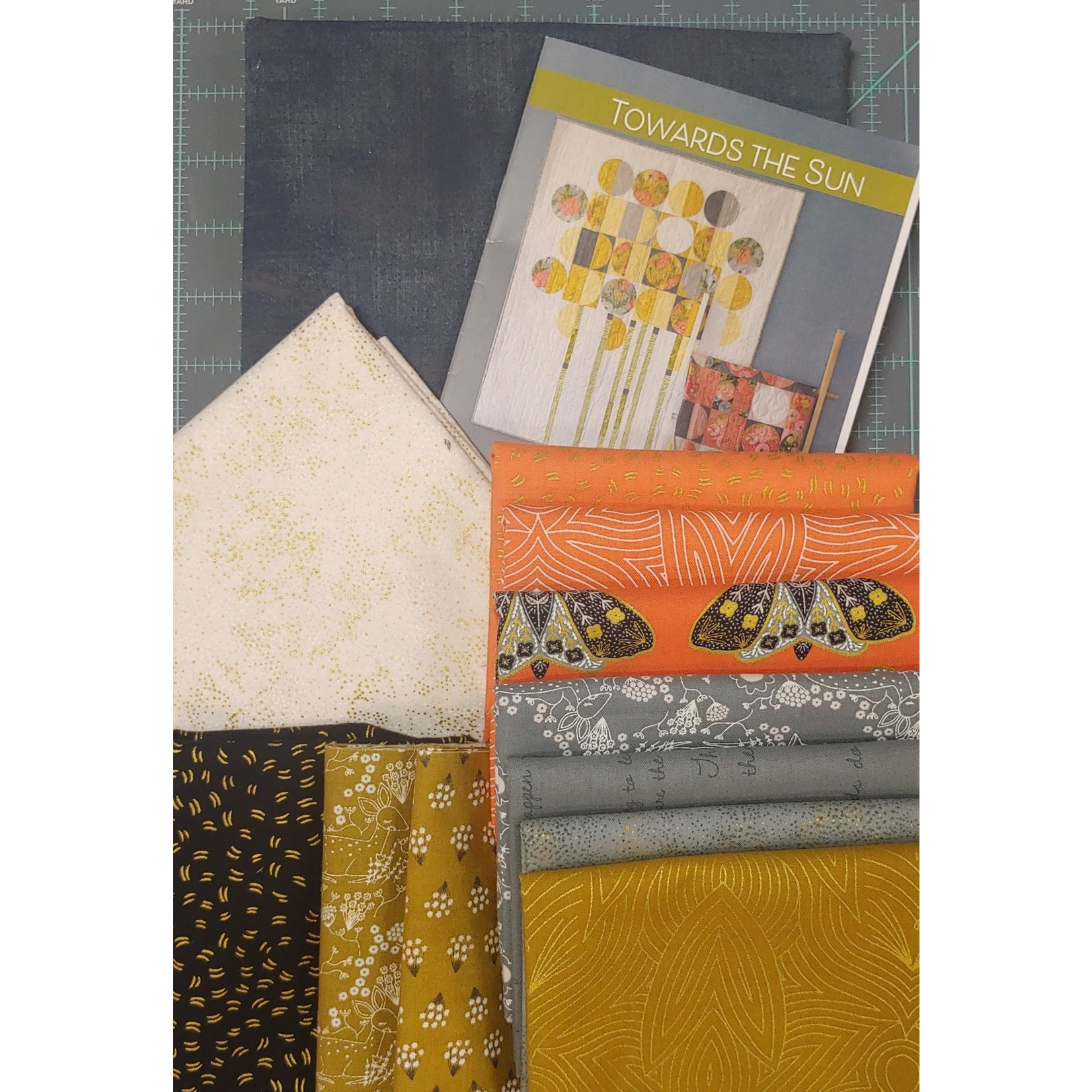 Robin Pickens Quilt Patterns Towards The Sun Quilt Kit - Dark Collection