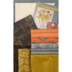 Robin Pickens Quilt Patterns Towards The Sun Quilt Kit - Light Collection