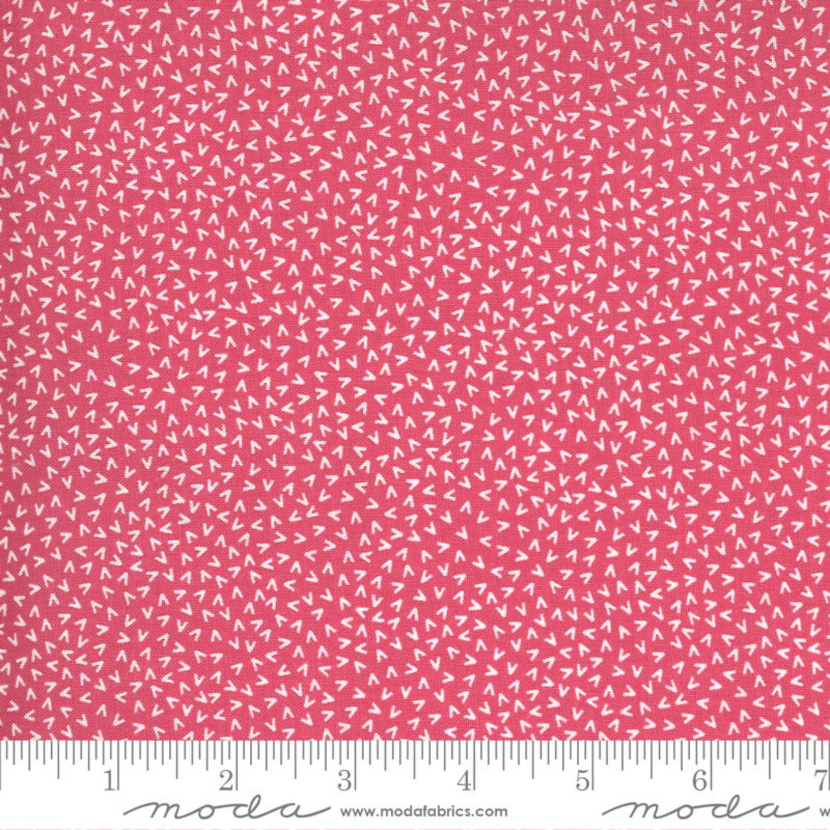 Sweetwater Spring Chicken, Tracks, Pink 55525-12 $0.20 per cm or $20/m