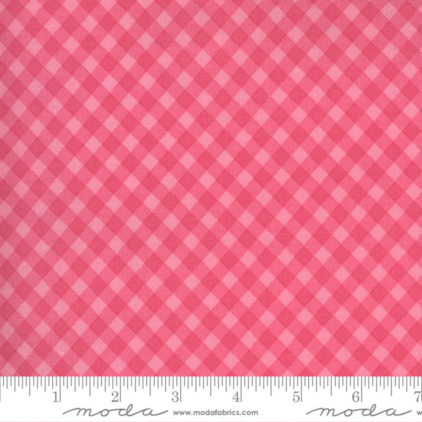 Sweetwater Spring Chicken, Gingham, Pink 55523-12 $0.20 per cm or $20/m