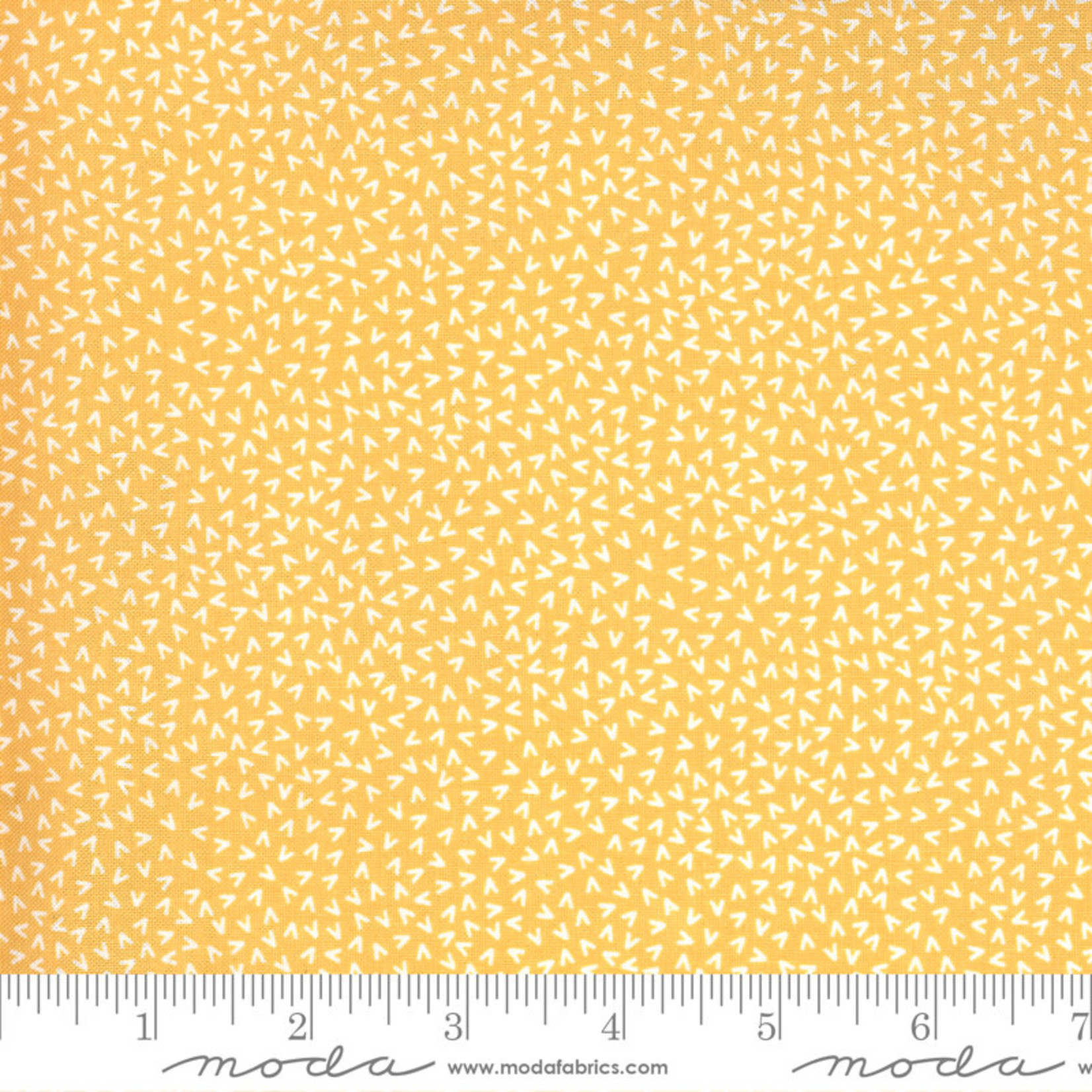 Sweetwater Spring Chicken, Tracks, Yellow 55525-14 $0.20 per cm or $20/m