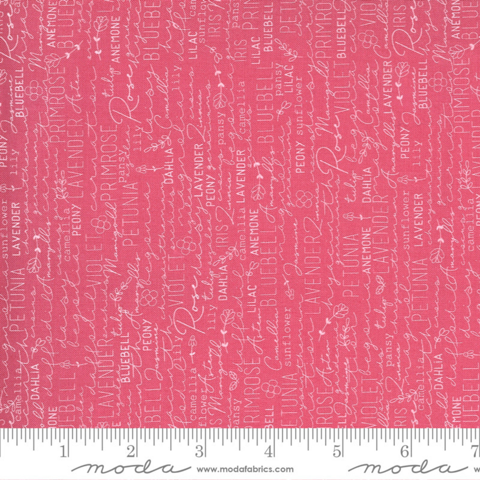 Sweetwater Spring Chicken, Posey, Pink 55520-22 $0.20 per cm or $20/m