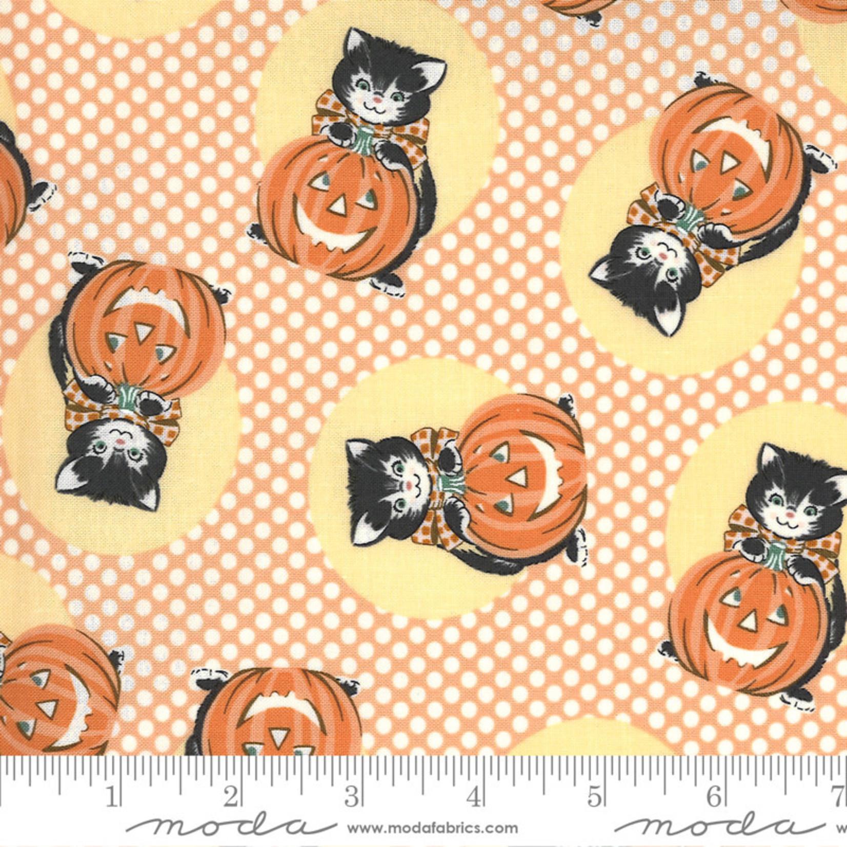 Urban Chiks Kitty Corn, Kitty, Pumpkin 31171-13 $0.20 per cm or $20/m