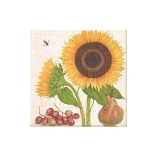 Botanical Studies Luncheon Napkins - 20 Per Package